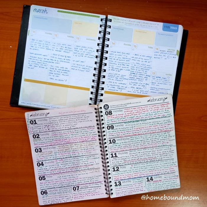 Why am I blogging planner diary